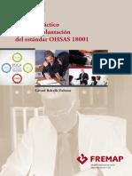 Manual Implantacion OHSAS 18001