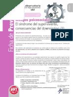Fichas21 Downsizing (II)