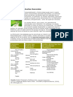 Fototoxicidad y Aceites Esenciales
