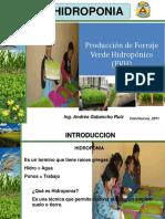 """Instituto de Educación Superior Tecnológico Publico  """"Narciso Villanueva   Manzo"""" -Forraje Verde Hidroponico"""""""