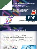 Gena  MEGF8. sindrom carpenter