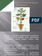 kuliah_antum.pdf
