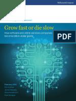 Grow Fast or Die Slow - McKinsey & Co