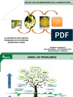 14 Polinizacion Apis Mellifera Corpoica (00000002)