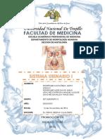 Histología Vi Unidad-sistema Urinario i