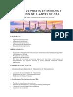 Contenido Tematico, TÉCNICAS DE PUESTA EN MARCHA Y OPERACIÓN DE PLANTAS DE GAS.docx