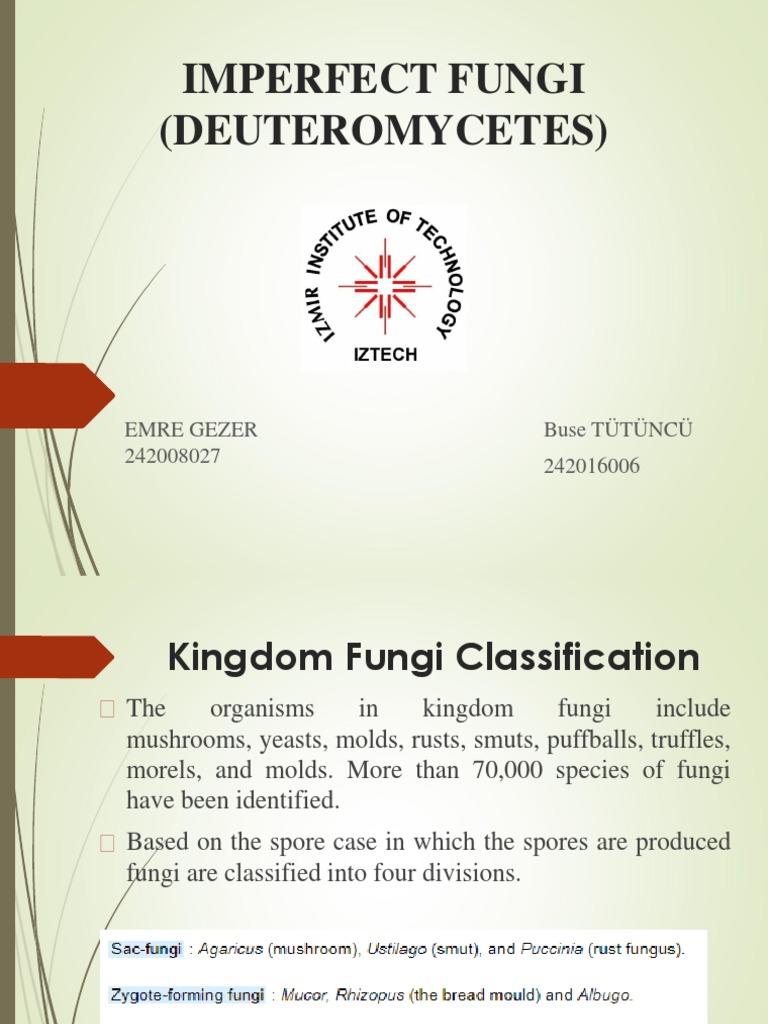 Deuteromycota asexual reproduction worksheets
