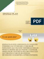 SPATELE PLAN (1).pptx