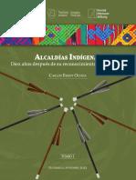 Alcaldias_indigenas._Diez_anos_despues_d (2).pdf