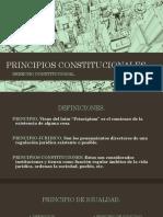 PRINCIPIOS CONSTITUCIONALES DIAPO
