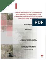 Caracterización general y depredación predispersiva de chica (Ramorinoa girolae) del Parque Provincial Ischigua-lasto (San Juan, Argentina).