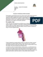 Fisiologia y Nutricion Del Aparato Digestibo (1)
