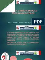 Tema 1 Maestria Curriculum