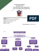 Mapa Conceptual Principios de La Organizacion