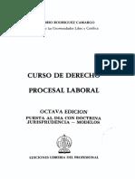 BELM-14100(Curso de Derecho Procesal -Rodríguez)