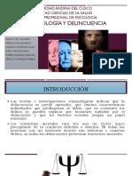 Psicopatología y Delincuencia