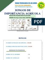 hongosgpm-160709022658