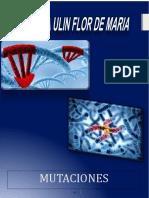 Mutaciones Biologia 2