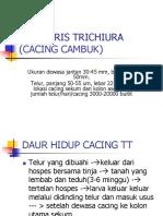 01. TRICHURIS TRICHIURA.ppt