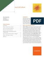 cell culture.pdf