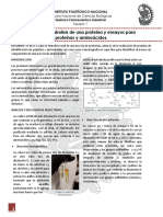 P3 Aminoácidos y Proteínas.