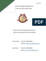 Report Archeolog 3-7-2018 y