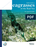 Red Sea Seagrass Guide 2016 Web Final