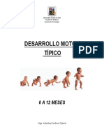 Des Arrollo Motor Tip i Co