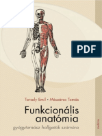 Tarsoly - Funkcionális anatómia