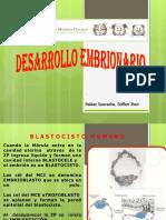 Clase 7) Desarrollo Embrionario
