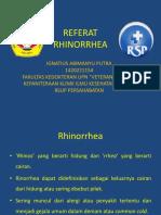 Referat Rhinorrhea