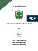 Makalah Irt (Fadhli Fajri 1610621010) Paralel 02