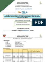 Plan Acompañamiento_CARLOS DIAZ