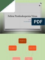 Feline Panleukopenia Virus.pptx