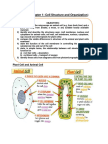 CELL STRUCTURE AND ORGANIZATION.docx