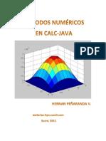 Metodos numericos en Calc-Java - 2011.pdf