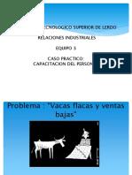 caso practico de un programa de capacitacion by GUSTAVO HERRERA CONTRERAS