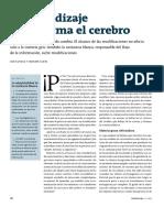 M1 Complementario Sholz J., Klein M. (2013). El Aprendizaje Transforma El Cerebro. Revista Mente y Cerebro, 4, 40 – 45.