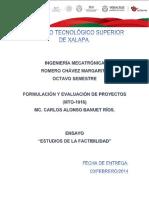 217343940-Estudios-de-La-Factibilidad.docx