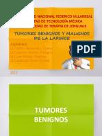 Tumores de Laringe