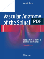 Vascular Anatomy of the Spinal Cord