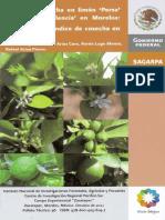 3883 Índice de Cosecha en Limón Persa y Naranja Valencia en Morelos