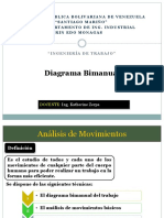 diagrama bimanual.pptx