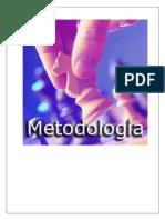 Trabajo Final de Metodologia-2 Braulio Perez