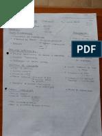 Apuntes Kamman.pdf