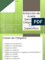 Extracción de Aceite Esencial de Orégano Con CO2 Supercrítico