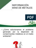 Transformación Microbiana de Metales