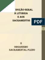 4.1  Organismo sacramental pleno.ppt