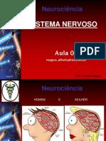 Revisao Neuroanatomia e Neurofisiologia Aula 02