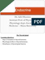 Endocrine 3